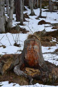 Gutwiarhini, Holzfigur im Val Quarazza