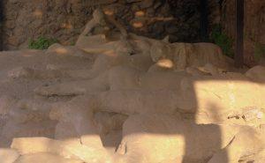 Orto dei Fugaschi, Pompeji