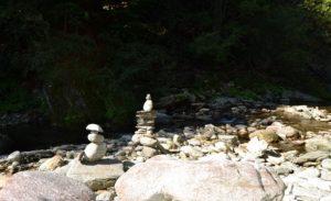 Zen am Fluss Rio Ragozzale Val Grande