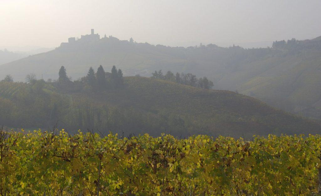 Blick auf Serralunga d'Alba